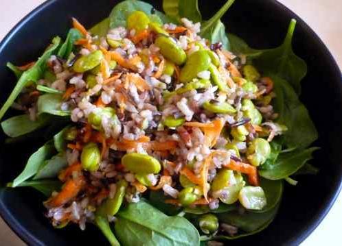 Fava Bean rice