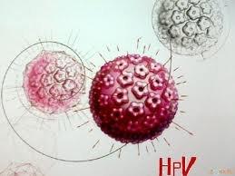 Новый тест обнаружит вирус папилломы человека только через мочу