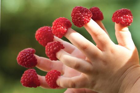 Плодове и зеленчуци за доброто психично здраве на децата