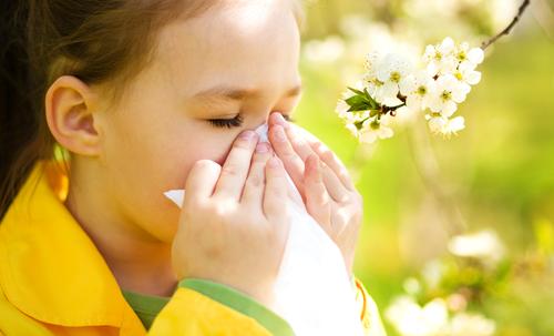 Пролет без запушен нос и сълзи в очите