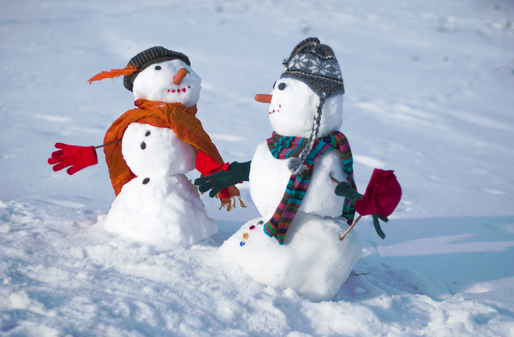 18 януари: Международен ден на Снежния човек