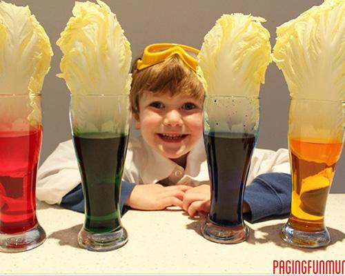 Два експеримента за любознайковци с безвредни хранителни бои
