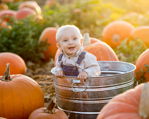 Вкусни бебешки рецепти с даровете на есента (част 1)