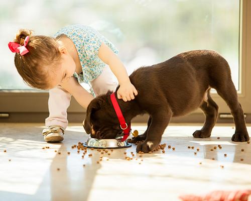 5 причини да отгледате детето си с домашен любимец