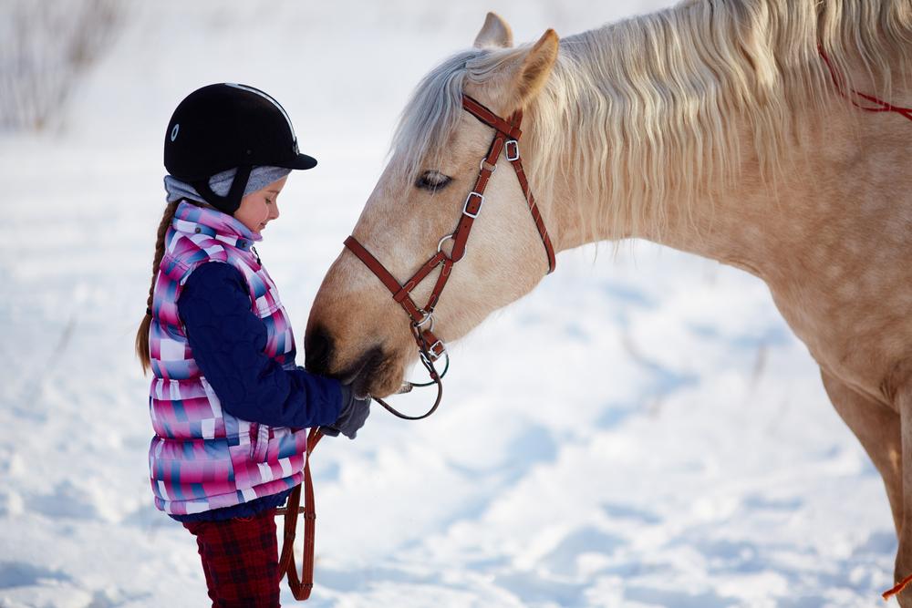 Лекуват деца с увреждания с конна езда