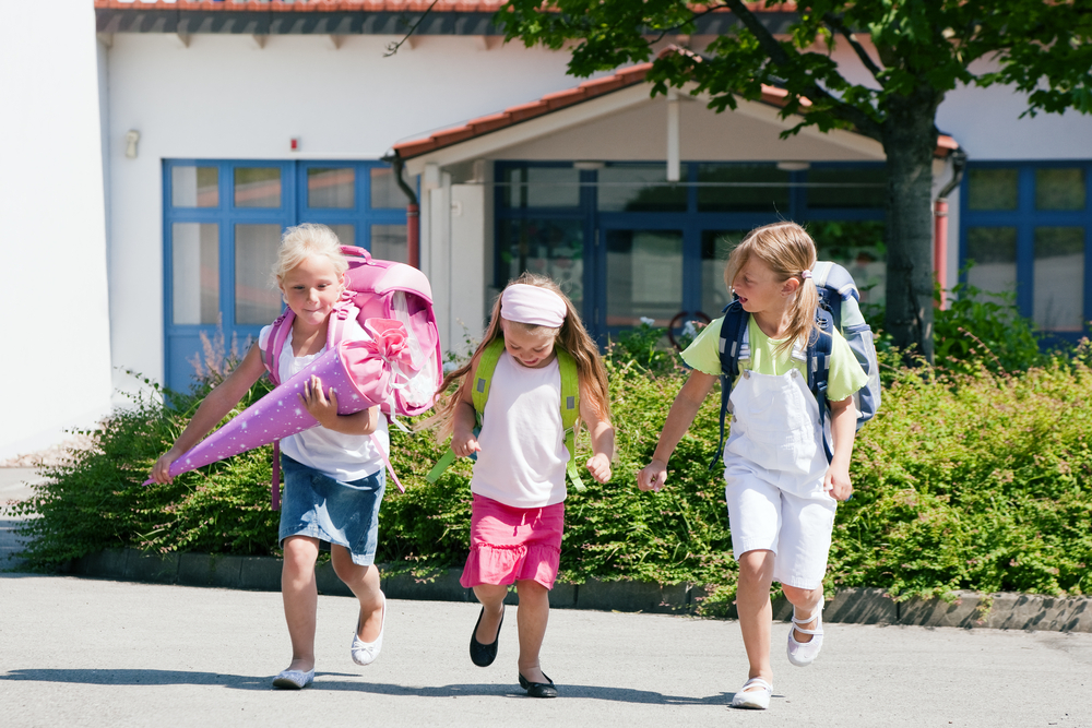 Имуностимуланти от природата в началото на есента за здрави деца през цялата година