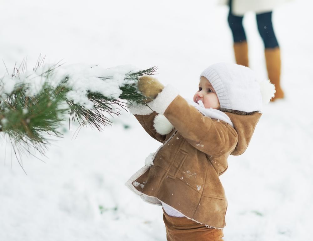 22 причини да обичаме зимата