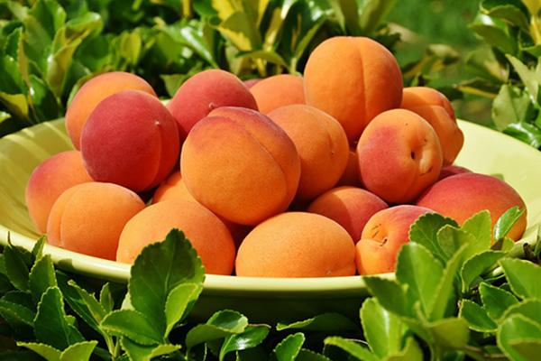 Три рецепта с абрикосами плюс кое-что к одному из символов лета
