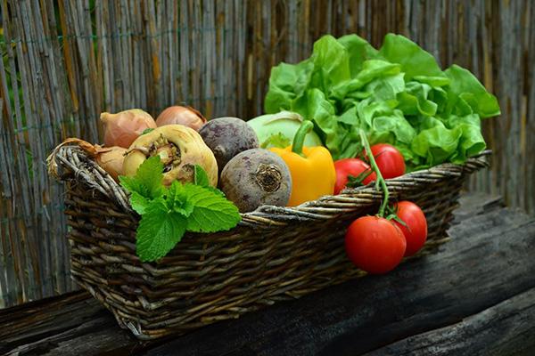Биохрани влизат в училищните менюта на децата до 14 годишна възраст