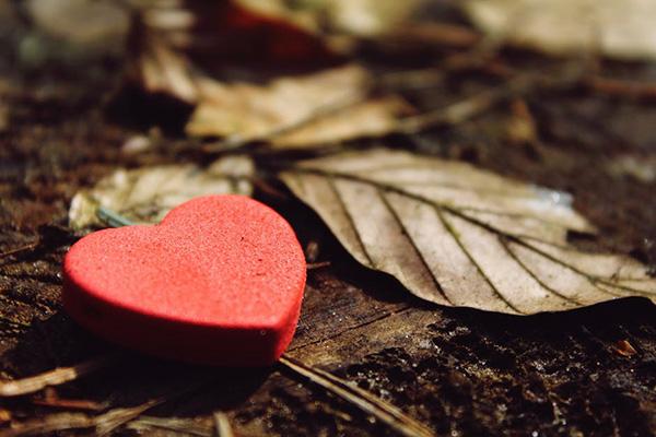 В твоето добро сърце може да е нечия последна надежда …