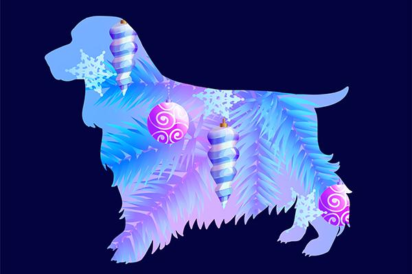 2018 – Година на Кучето