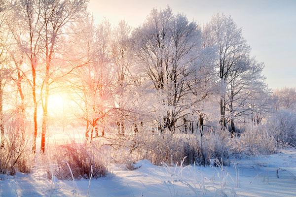 Днес е най-краткият ден в годината, настъпва зимата