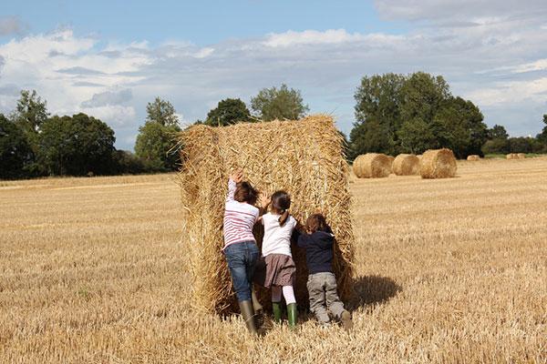 Защо братовчедите имат важна роля в живота на всяко дете
