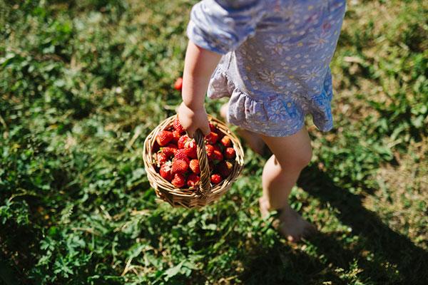 14 пролетни рецепти с ароматни ягоди