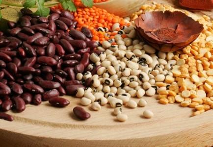 10 хранителни вещества, от които се нуждае всяко дете